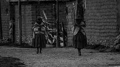 Isla del Sol (Jorge Oleques) Tags: bolivia cholas naureza