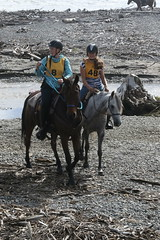 IMG_EOS 7D Mark II201604030592 (David F-I) Tags: horse equestrian horseback horseriding trailriding trailride ctr tehapua watrc wellingtonareatrailridingclub competitivetrailriding sporthorse equestriansport competitivetrailride april2016 tehapua2016 tehapuaapril2016 watrctehapuaapril2016