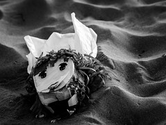 Lost souvenir (martina.stang) Tags: blackandwhite beach beautiful face lost eyes emotion handmade memories emotional childhoodmemories brokentoys childhoodsouvenir abstractmask fadescolors