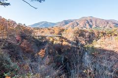 NarukoOnsen-36 (clouddra) Tags: autumn japan jp miyagiken narukogorge narukoonsen sakishi