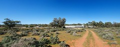 "Sheep Station, ""Ellandale"" Minindee Rd, NSW. (echocaribbean) Tags: australia touring outback panorama menindee"