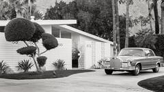 P.S.-16-323 (schmikeymikey1) Tags: trees bw plants house building cars landscape path style palmtree transportation