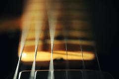 Telecaster Lipstick Pickup and Neck (K. McMahon) Tags: chicago closeup illinois guitar guard pickup fender instrument string strings lipstick pick six fret telecaster fretboard transducer pickguard resissue