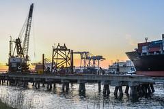 sunset dutra (pbo31) Tags: california sunset color silhouette yellow port oakland harbor nikon ship over container bayarea april sail eastbay shipping alameda alamedacounty portofoakland 2016 boury pbo31 d810