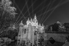 Disneyland: Reflecting on Sleeping Beauty Castle (Jessie Chaisson) Tags: b sleeping white black castle beauty jessie photography nikon disneyland w chaisson