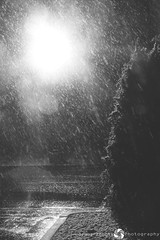 25/365 (JennaAbbottPhotography) Tags: winter snow spring 365 365day 365dayproject