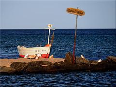 Willems Hafen (Ostseetroll) Tags: geotagged deutschland balticsea fishingboat hafen ostsee deu willems schleswigholstein fischerboot ostseestrand sierksdorf geo:lat=5406234066 geo:lon=1076595329