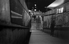 Bear-Pit_F80-TMY (AJ_UK) Tags: film 35mm bristol tmax tmy nikonf80 monocrome