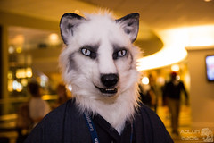 FWA2016-68 (AoLun08) Tags: costume furry convention anthropomorphic anthro fursuit fwa fursuiter fursuiting furryweekendatlanta furryweekendatlanta2016 fwa2016