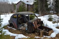 Volvo PV 544 (Flash 86) Tags: volvo sweden sverige pv 544