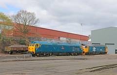 A pair of class 50s stabled at Kidderminster (Andrew Edkins) Tags: canon diesel shed worcestershire arkroyal hoovers defiance severnvalleyrailway kidderminster class50 vacs brblue largelogo 50035 50049 stabled