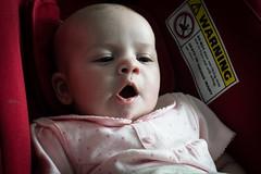 bored now (pamelaadam) Tags: digital spring fotolog josie april 2016 liecester thebiggestgroup engerlandshire greatgodchild