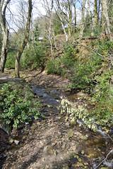 DSC_0204 (Geogrob) Tags: fieldwork edale grindsbrook goldenclough riverstudy rivernoe