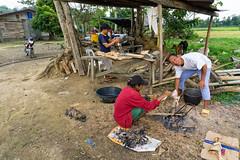Lemery Farm Life (benchorizo) Tags: farm philippines iloilo lemery