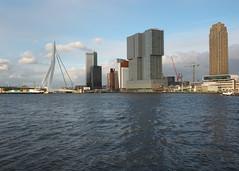 P4290005 (Nico Looijen) Tags: rotterdam erasmusbrug wilhelminapier