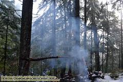 120415-004 (leafworks) Tags: usa oregon washington roadtrips columbiariver 01 cliffhanger thegorge whitesalmon northernoregon