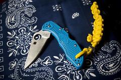 Spyderco Delica 4 (D Camacho) Tags: blue flash edc spyderco pocketknife frn paracord delica4 pentaxk5iis hd2040limited