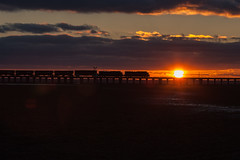 NB on the viaduct (Train Chaser) Tags: sunsetrahmcsx