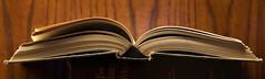Book Pano (giantmike) Tags: macro closeup book pages panoramic ef100mmf28lmacroisusm