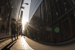 WARM WINTER DAY (ajpscs) Tags: street winter people japan japanese tokyo ginza nikon streetphotography d750 日本 nippon 東京 銀座 冬 backtowork fuyu seasonchange warmwinterday ニコン ajpscs lastdayofholiday ふゆ newyear2016
