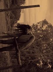 Distorsione. (BluElika) Tags: wood colour women flickr rami verticale bosco seppia posizione disposizione