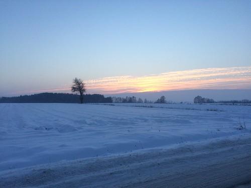Zimowy krajobraz między Sufczynem a Gadką