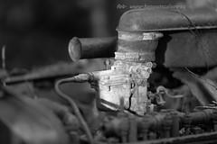20160203089762 (koppomcolors) Tags: old cars car forest vintage sweden skog bil sverige veteran vrmland gammal bilar varmland bstns koppomcolors