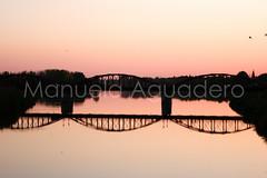 #talaveradelareina #2010 #toledo #castillalamancha #espaa #spain #turismo #tourism #puente #bridge #agua #water #reflejo #reflection #atardecer #sunset #photography #photographer #sonyalpha #sonyalpha350 #sonya350 #alpha350 (Manuela Aguadero) Tags: bridge sunset espaa reflection tourism water puente atardecer photography spain agua photographer toledo reflejo turismo castillalamancha talaveradelareina sonyalpha sonyalpha350 sonya350 alpha350