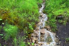 Nice Little Creek (winkler.roger) Tags: landscape austria mellau vorarlberg bregenzerwald mellental