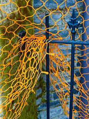 Caught in the Net (Steve Taylor (Photography)) Tags: street city blue newzealand christchurch orange building tree green net church metal stone manchester canterbury bark nz southisland cbd railing netting worcester