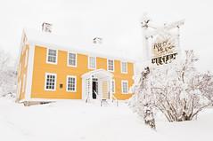 Yellow Whiteout (Grant is a Grant) Tags: ca winter snow canada novascotia ns snowstorm january kitlens wolfville 1855 wintertime nikkor1855mm randallhousemuseum nikond90 vsco vscofilm