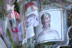 bowie memorial site / brixton / london 2-2016 -p4d- 384 (photos4dreams) Tags: city greatbritain vacation england london death site mural tour britain sightseeing stadt gb february tod brixton davidbowie februar remembering gedenken 2016 ziggystardust susannahvvergau photos4dreams photos4dreamz p4d london22016p4d