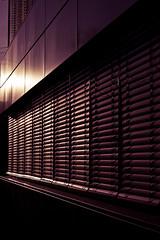 vanishing point (Rebel T2i (digital)) Tags: sunset window lines reflections vanishingpoint reflex sonnenuntergang fenster blinds freiburg reflektion gegenlicht 2015 linien jalousien fluchtpunkt