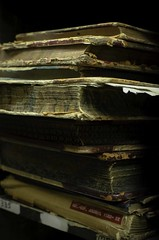 Old Book Stack (dmb0309) Tags: antiquebooks