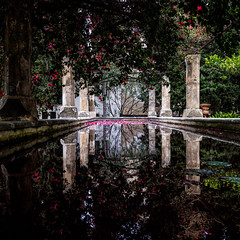 Jard del Bisbe, Palma de Mallorca, January 4, 2016. (Ulf Bodin) Tags: flowers reflection garden square pond spain outdoor bougainvillea es pillars palma spanien palmademallorca illesbalears jarddelbisbe canoneosm3 canonefm222stm