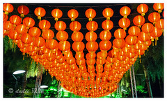 rows of lanterns (deslee74) Tags: leica yahoo google singapore flickr 28mm cny lanterns elmarit