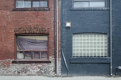 A Wall: Etobicoke