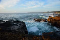 Burwood's Beauty (Paul Hollins) Tags: seascape sunrise australia newsouthwales aus merewether nikon1635mmf4 nikond750