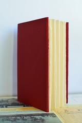 Handmade Book, bound by me (FreckledPast) Tags: book handmade bookbinding evinok