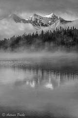 Herbert Lake (Antonio Puche) Tags: blackandwhite bw lake canada fog landscape rockies lago paisaje montaa niebla banf mountin rocosas herbertlake rockiesmountain antoniopuche
