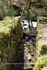 A water wheel pit.  Golitha Fall National Nature Reserve (doublejeopardy) Tags: england cornwall unitedkingdom naturereserve gb liskeard riverfowey golithafalls