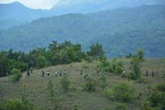 Trek routes (mansi-shah) Tags: rainforest farming coorg madikeri forestecology mansishah rainforestretreat jenniferpierce ceptsummerschool