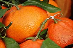 Orangenhaut (SpitMcGee) Tags: macro shell schale orangen cellulite 55200 sdfrchte orangenhaut citrusfrchte spitmcgee