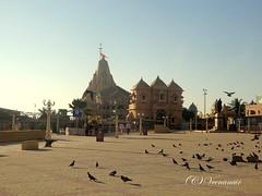 Somnath Temple-Gujarat (Veena Nair Photography) Tags: india architecture pigeons gujarat templearchitecture somnathtemple veenanairphotography somnathtempleatdusk