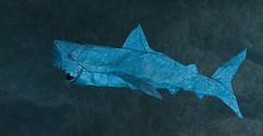 White Shark (日輪富 Philogami) Tags: white art paper shark origami sealife vu nguyen vog ngoc origamido philogami