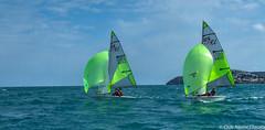 Club Nutic L'Escala-Puerto deportivo Costa Brava-38 (nauticescala) Tags: optimist navegar costabrava regatas regata feva creuer velalleugera velaligera cbsm lser lescalagde