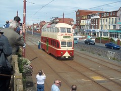 BT Balloon Tram 703 (deltrems) Tags: public audience transport balloon tram passengers vehicle service tramway blackpool cameramen tramcar enthusiasts bispham binns tramoraks