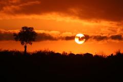 Batt diyorlar, ama bir gn yine doacak / Er ge k gelip karanl boacak.. (yakup.bugra) Tags: sunset sun silhouette turkey noedit siluet nofilter gnbatm gunbatimi akcakoca akakoca dzce duzce