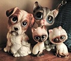 Sad Face Monday (Lawdeda ) Tags: loving vintage ceramic puppies sad gig kitties them totally picmonkey