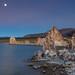 Blue Hour Moon at Mono Lake
